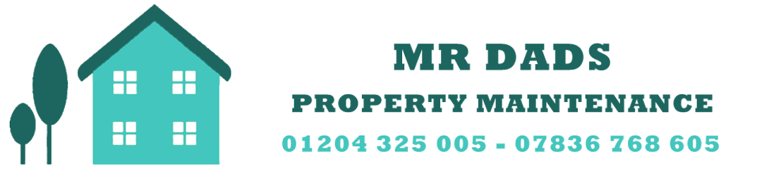 MR DADS PROPERTY MAINTENANCE LIMITEDLogo